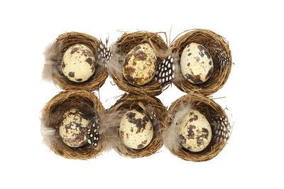 Hniezdo s vajíčkom