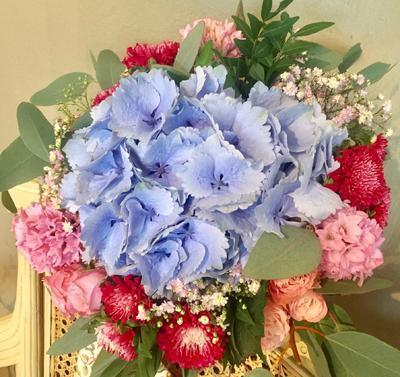 Kytička modro-ružová