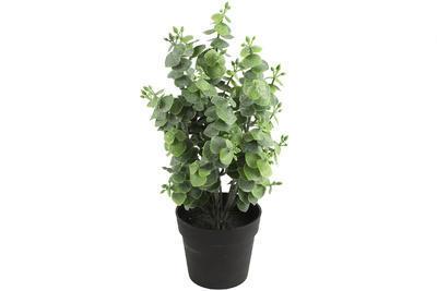 Kvet v kvetináči - eucalyptus - umelá dekoračná rastlina výška 32cm