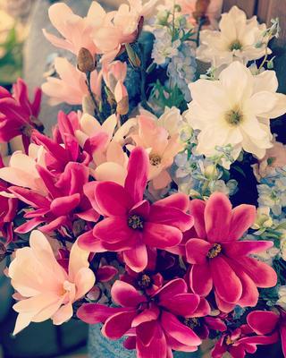 Magnolia Spray Chaica M, rosa - 2